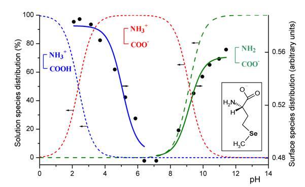 Ph impedance study