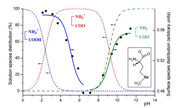 how to read amino acid substitution mcat