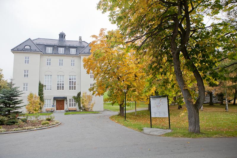 Østmarka. Foto: Håvard Kallestad