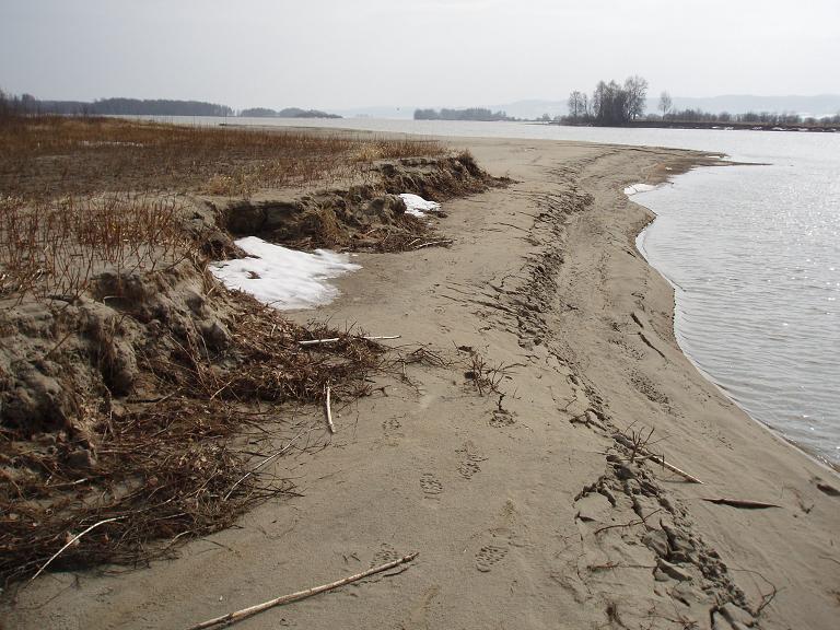 Sediment flow in the yern delta
