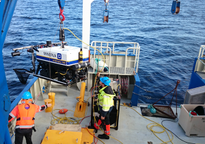 The ROV Minerva being launched for studies of a deep sea coral reef. Photo: Torkild Bakken.